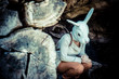 young hipster rabbit mask woman in autumn
