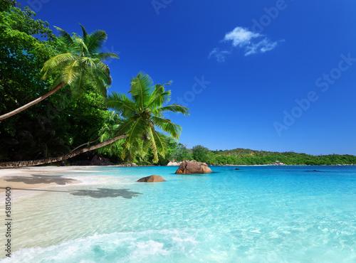 Foto-Kissen - beach at Praslin island, Seychelles