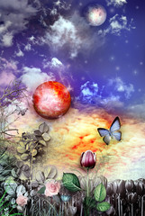 Obraz na płótnie Canvas The secret kingdom series
