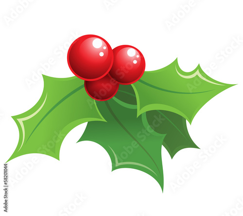 Fotografie, Obraz  Cartoon shiny Christmas holly decorative ornament