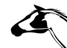 Veteriner Logosu  ( Versiyon 2 )