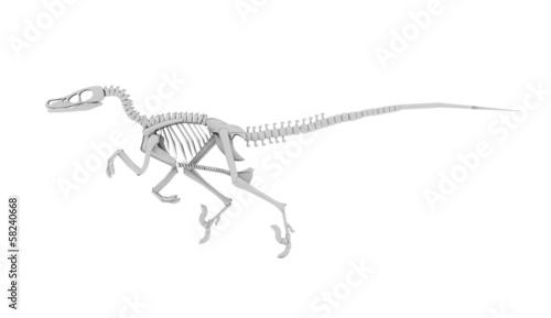 Photo  Dinosaur skeleton concept rendered