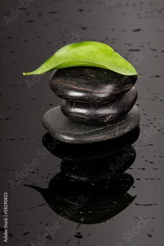 trzy-czarne-kamienie-z-zielonym-lisciem-na-szczycie-i-ciemnym-tle