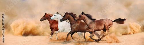 Poster de jardin Desert de sable Herd gallops in the sand storm