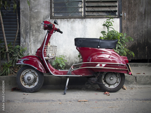 Fotomural  moped