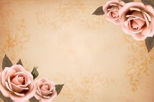 Pink Roses On A Vintage Old Pa...