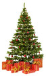 Christmas fir tree and presents gifts box over white background