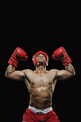 Fototapeta Boks Male boxer with arms over his head