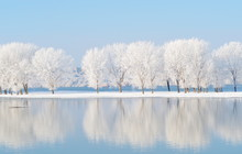 Winter Landscape With Beautifu...
