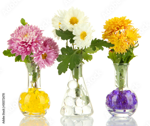 Photo Beautiful flowers in vases with hydrogel isolated on white