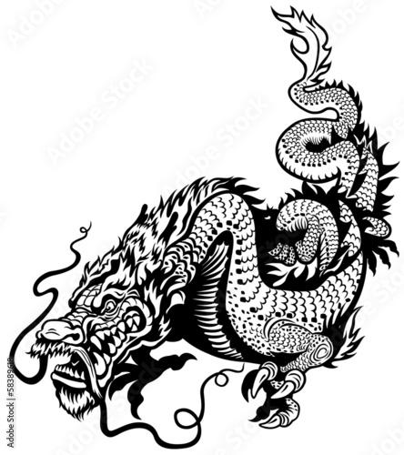 Photo  dragon black white