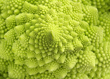Detail Of Texture Of A Romanesco Broccoli