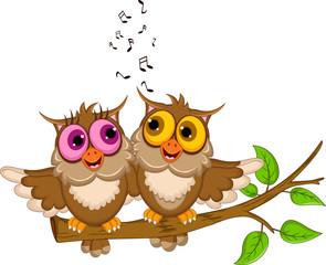 cute couple owl cartoon singing