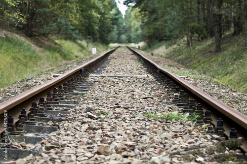 Poster Voies ferrées Railroad Tracks in the Forest