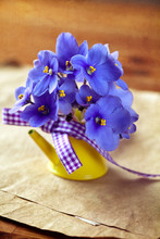 Violet Flowers In Yellow Flower Pot (retro Style)