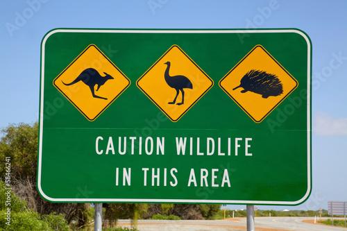Foto op Canvas Australië Australian Wildlife Sign