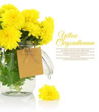 Yellow Chrysanthemum In Vase
