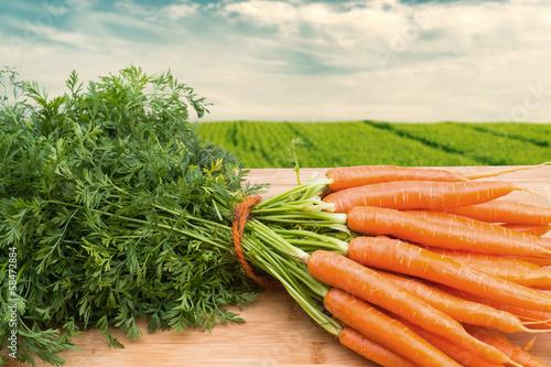 Obraz Carrots Bunch - fototapety do salonu