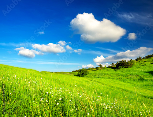 Tuinposter Lime groen Beautiful landscape in the summer time.