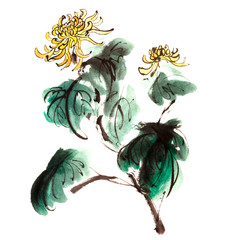 Panel Szklany Botaniczne chrysanthemum