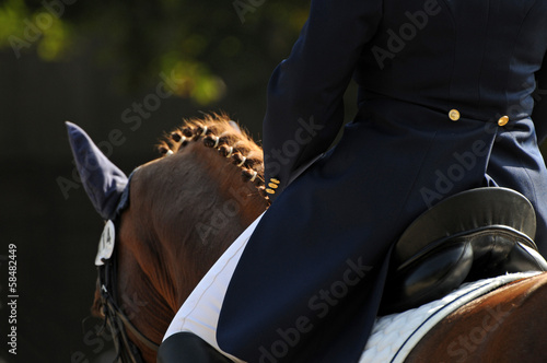 Photo sur Aluminium Equitation Dressurreiten