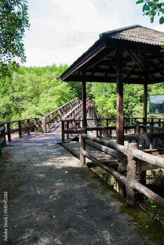 Tuinposter Weg in bos Pavilion with pathway at Mangrove forest