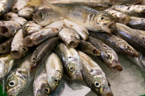 Photo Fish market