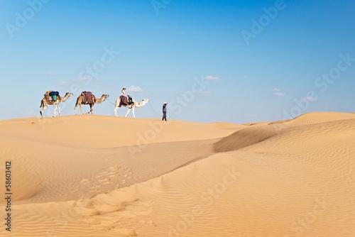 Fotografija  Méharée dans le Grand Erg Oriental - Tunisie