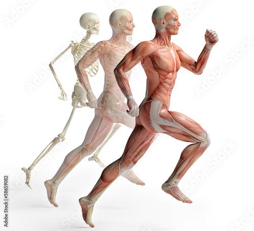 anatomia-meskiej-pracy