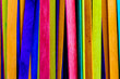 colorful wood ice-cream stick with copy-space for text
