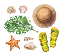 Summer Holiday Illustrations. Straw Hat, Flip Flops, Shells