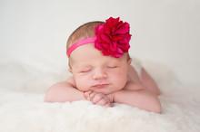 Newborn Baby Girl With Hot Pink Flower Headband