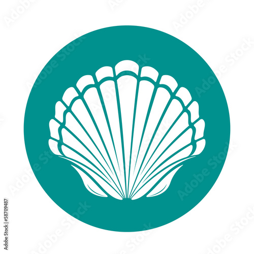 Stampa su Tela Scallop sea shell
