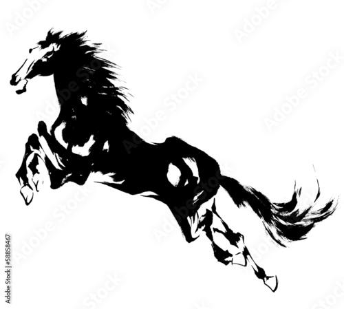 Fototapeta 日本画の馬 obraz