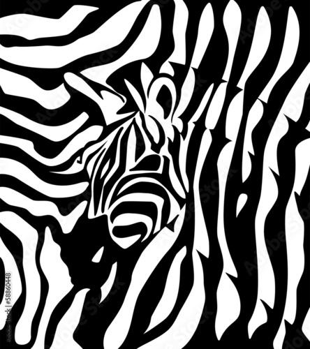 logo-firmy-zebra
