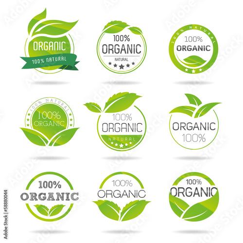 Fotografía  Ecology, organic icon set. Eco-icons