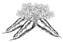 Vintage Retro Woodcut Carrots