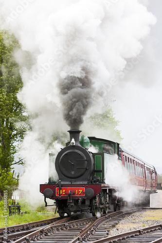 Fotografie, Obraz steam train, Strathspey Railway, Highlands, Scotland