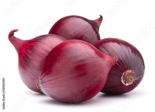 Fotografía  red onion bulb
