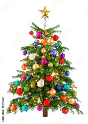 Foto op Canvas Madeliefjes Fröhlich bunter Weihnachtsbaum