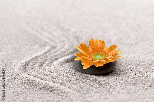 Photo sur Plexiglas Zen pierres a sable Sable et gerbera orange