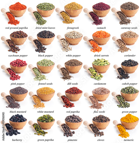 collection of different spices and herbs Poster