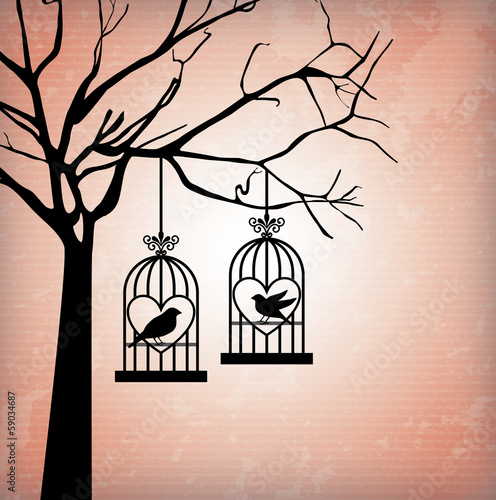 Foto op Canvas Vogels in kooien love