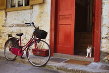 Vintage Bicycle And Cat On The...