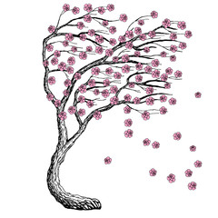 Panel Szklany Natura Sketch vector sakura