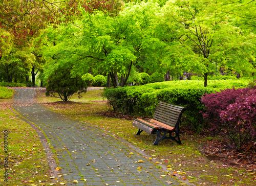Fotografía  Green city park. Shanghai, China