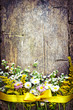 spring rustic background with flowers