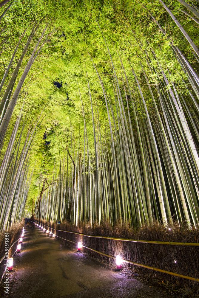 k chenr ckwand aus glas mit foto bamboo forest nikkel. Black Bedroom Furniture Sets. Home Design Ideas