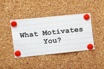 Panel Szklany Motywacje What Motivates You?