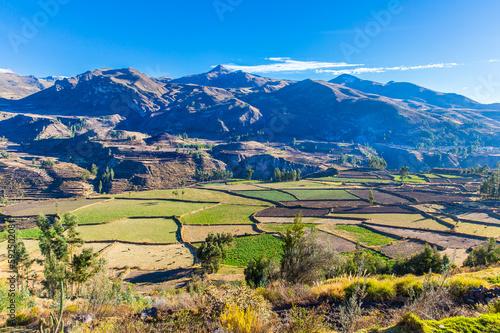 Colca Canyon, Peru,South America. Incas to build terraces